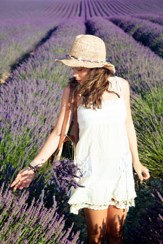 Country-lavender-field-image