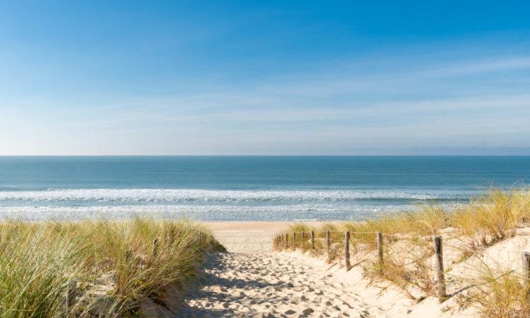 Access to the sandy beach through the dunes at cap ferret, arcachon bay