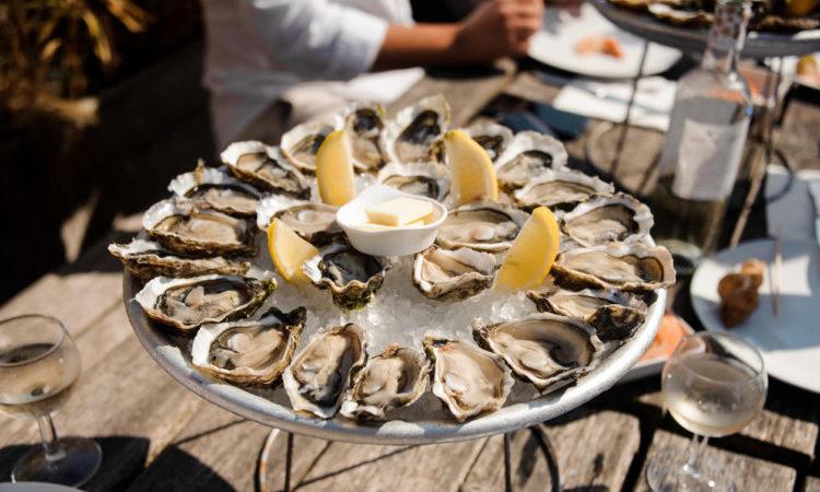oysters arcachon bay