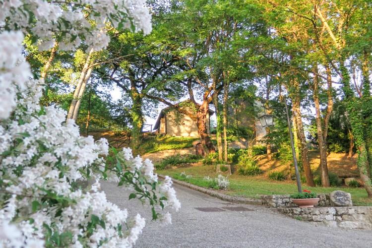 Villa Il Gufo driveway