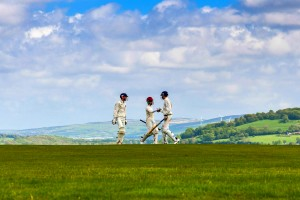 Cricket Players - Oliver's Travels
