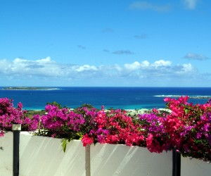 Caribbean-Sea-Beach-Olivers-Travels