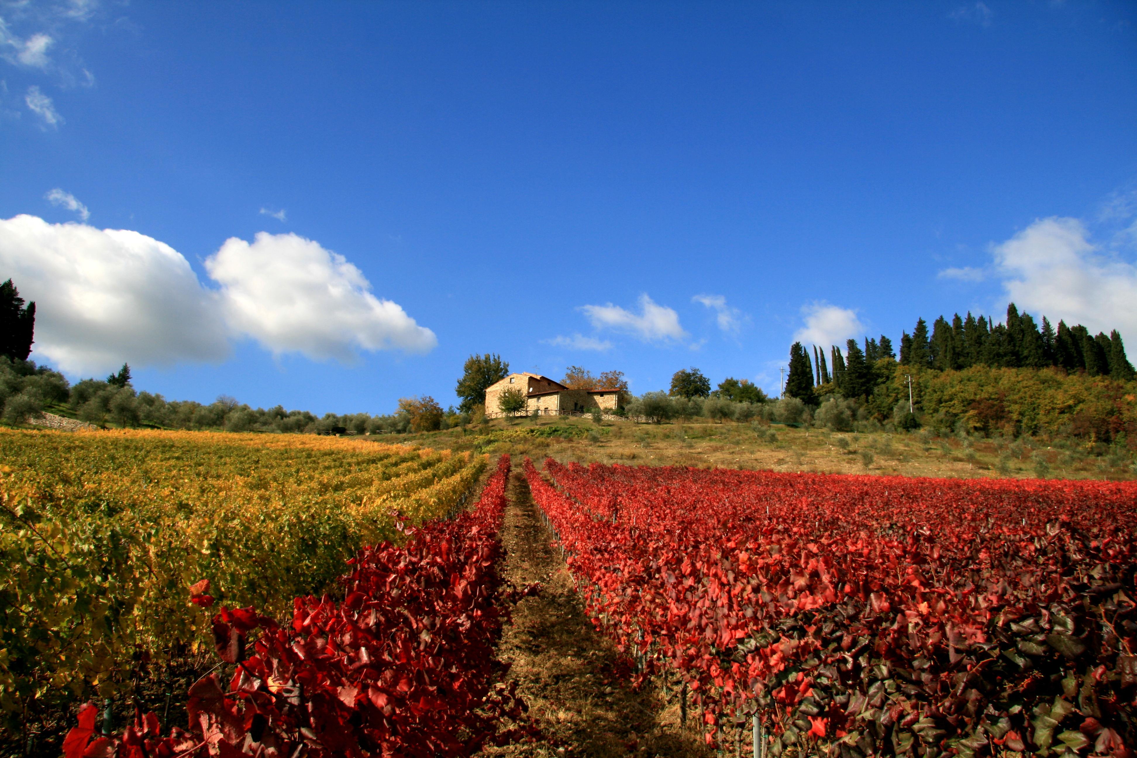 Villa Pani - Tuscany - Oliver's Travels