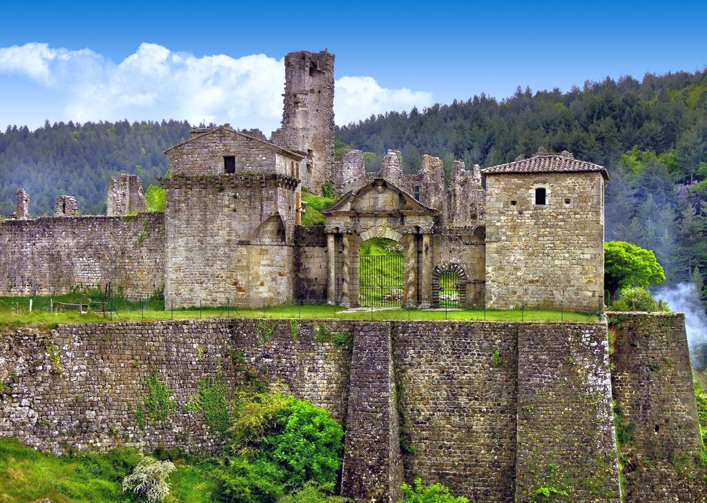 Chateau De Baloigne - Rhone Alpes - Olivers - Travels