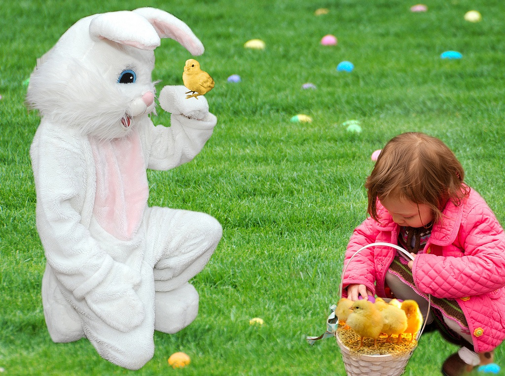 Easter Fun - Oliver's Travels (Image via Beverly on Flickr)