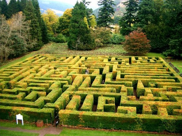 The Maze at Trachair House - Oliver's Travels