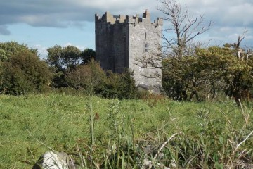 Smiths Castle - Ireland - Large Holiday Homes - Oliver's Travels