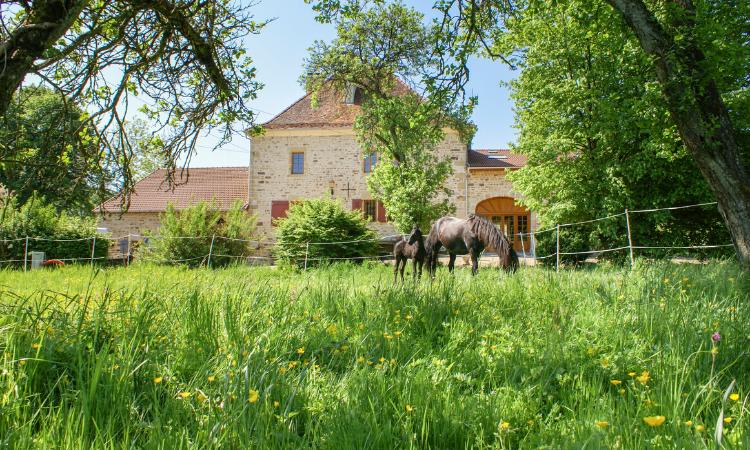 Chateau Beaucharm, Champagne