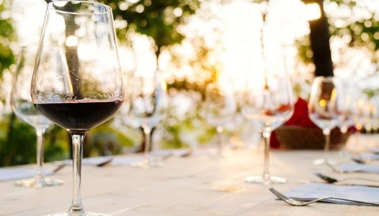 Wine tasting - Olivers travels