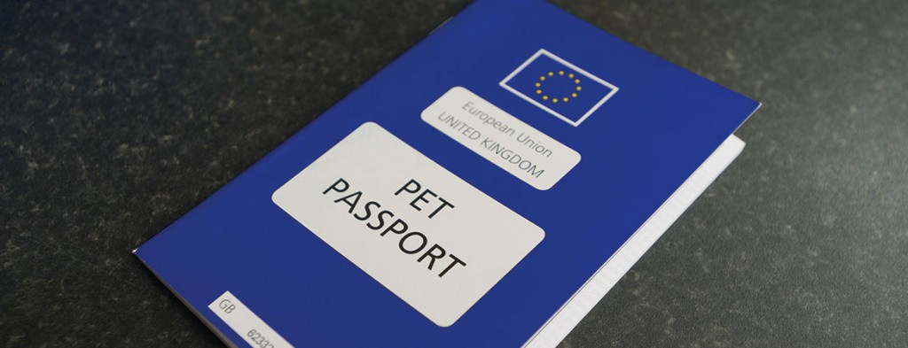 Pet Passport via www.knottsyardvets.co.uk
