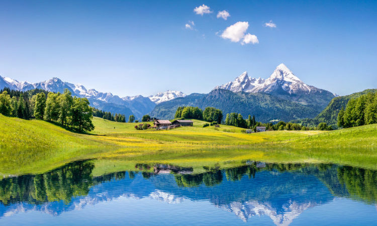 alpine summer holidays