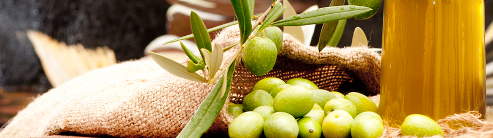 Taste the real olive oil in Andalucia..