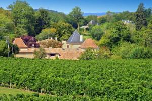 Chateau le Maurin Estate - Dordogne