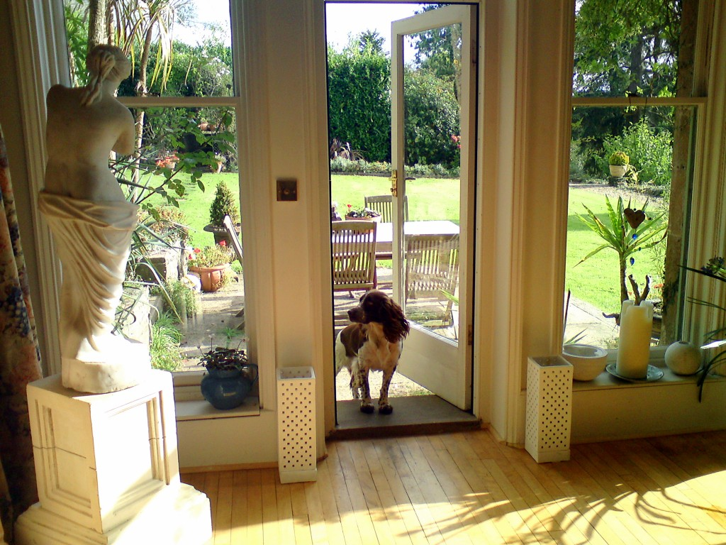 Dog Friendly Cottages - Chulmleigh Manor - Devon - Oliver's Travels