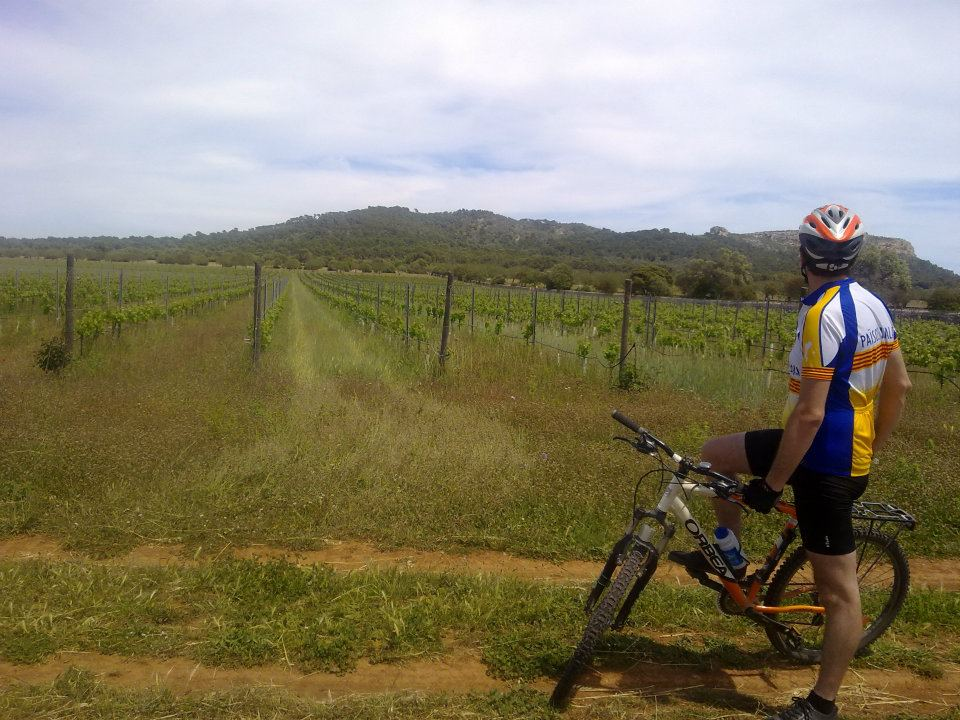 Bicycle Wine Tour - Mallroca - Bicillevant