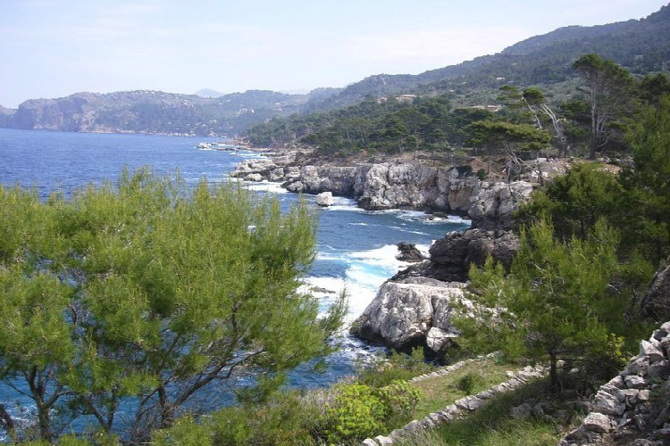 Group Activities in Mallorca | View of Mallorca Coastline