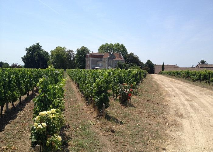 Wine tour - Aquitaine - Chateau Cantenac