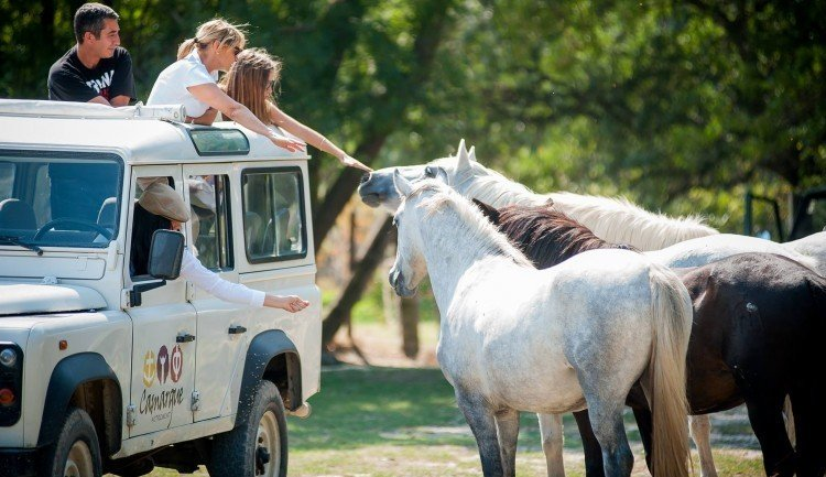 Ride in a 4x4 with Camargue Autrement