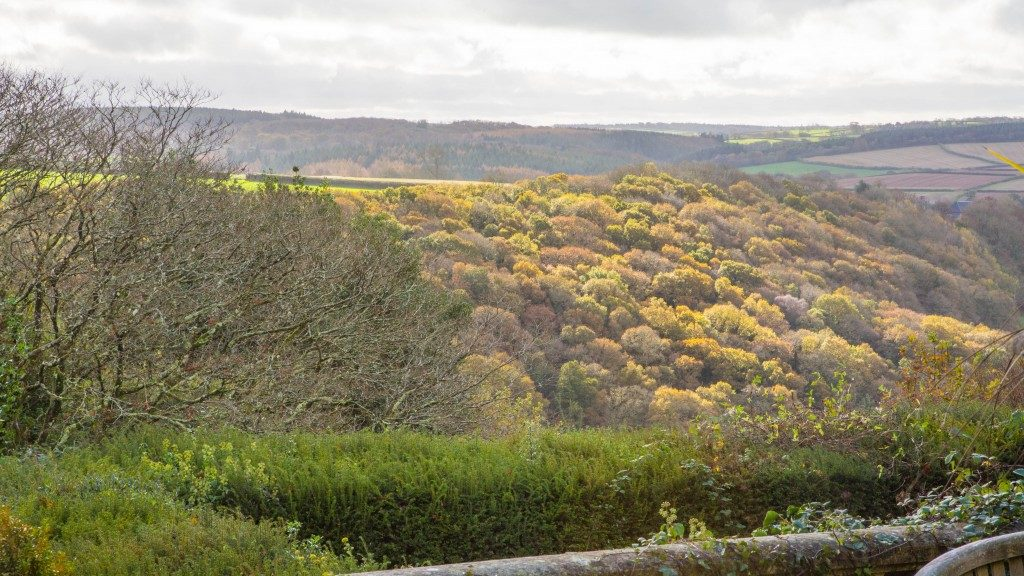 View over Devon from the terrace