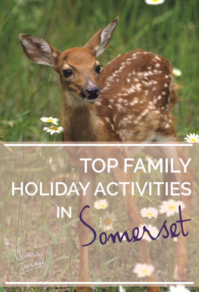 top family activities in somerset