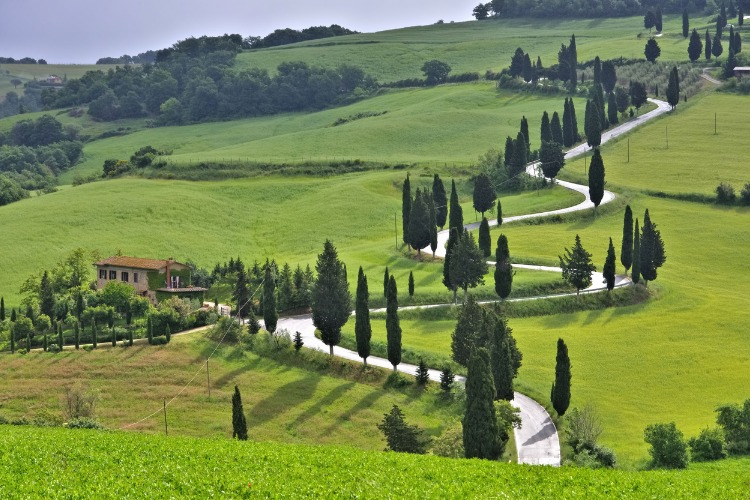 best group activities in Tuscany