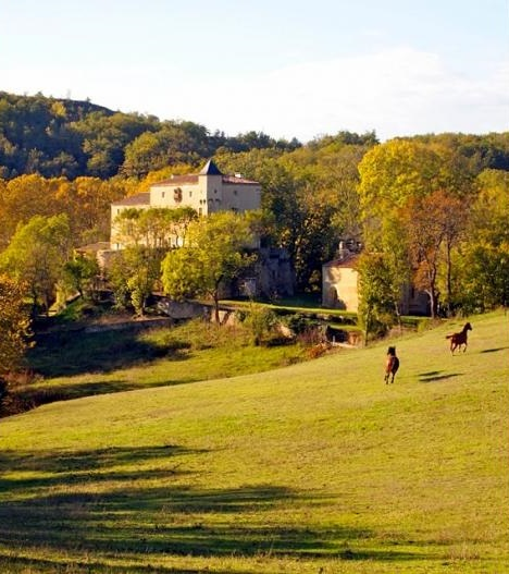 Chateau Le Quille - Sleeps 20