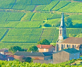 Burgundy Travel Guide - Oliver's Travels