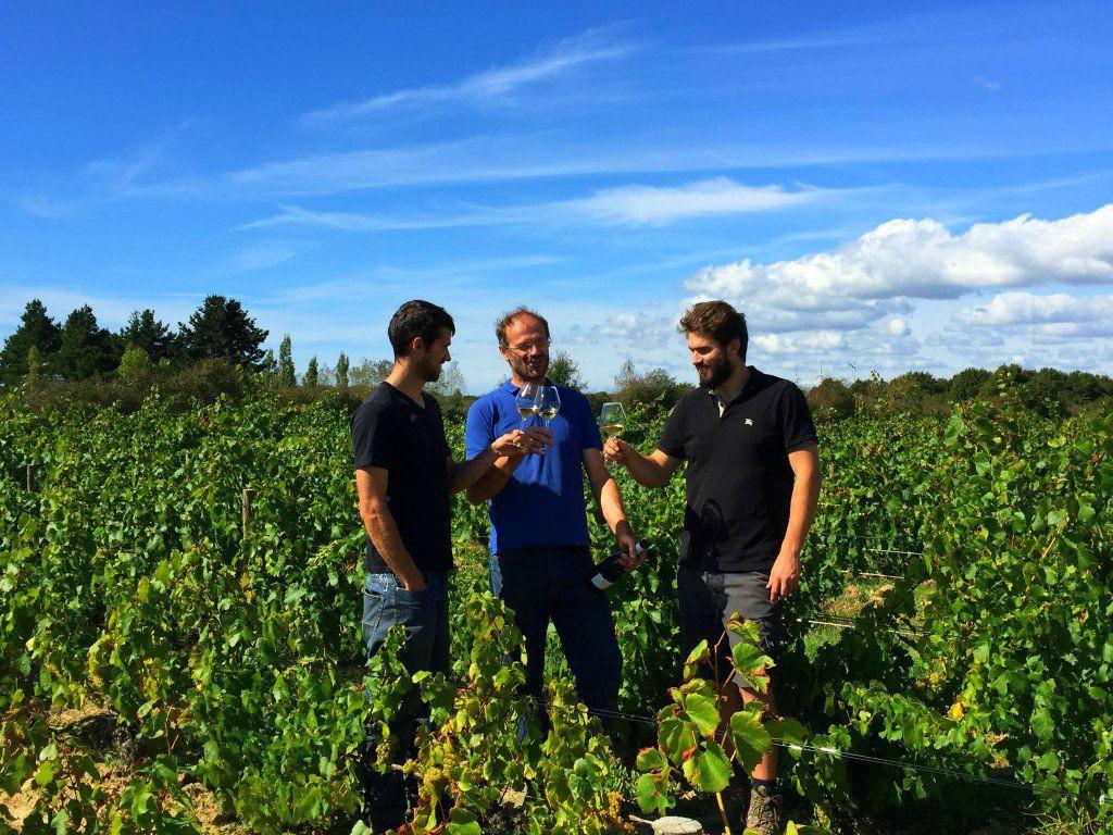 Domaine Saint Nicolas - Winery & Vineyard