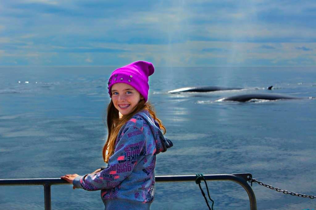 Cork Whale Watch - Ireland
