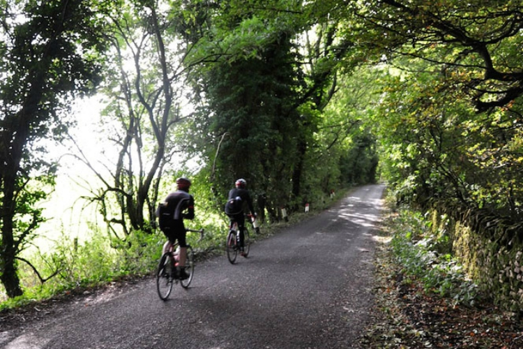 cycling on a forest road in cotswolds