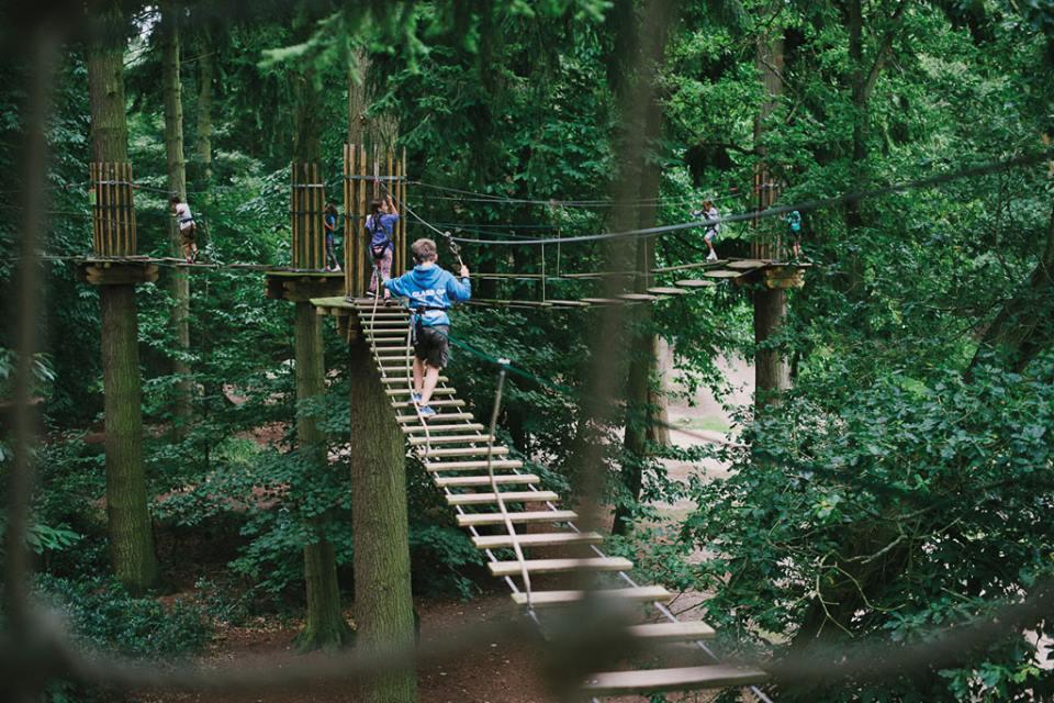 Go Ape! Segway Experience - Norfolk