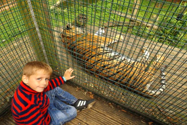 Thrigby Hall Wildlife Gardens - Norfolk