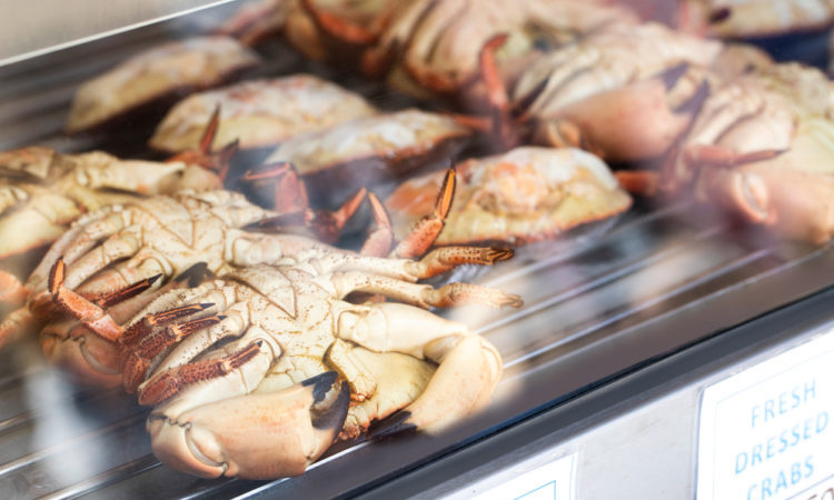 Fishmonger Shop Window Display Of Dressed Crabs For Sale In Cromer Norfolk UK