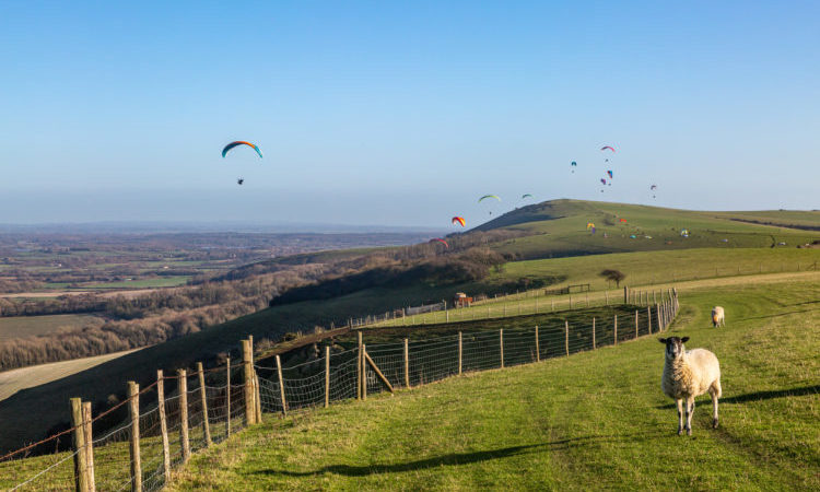 sussex paragliding