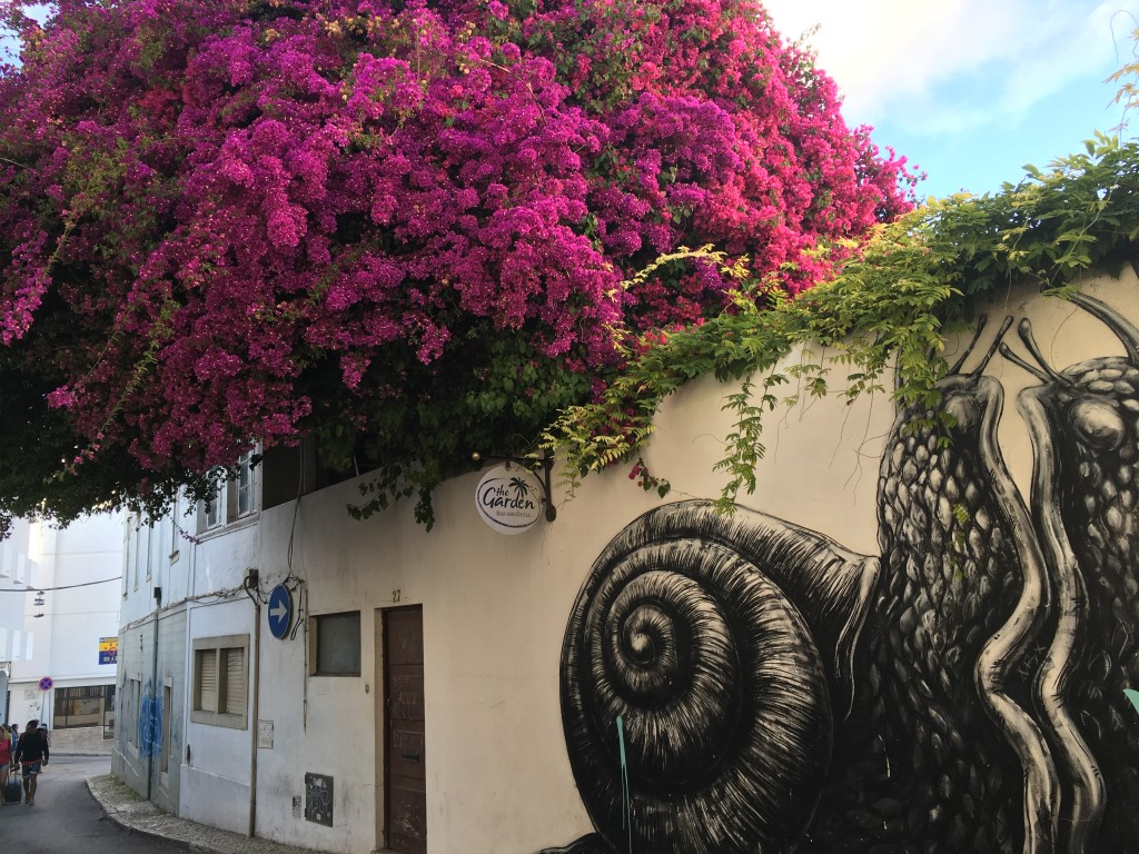 Flowers and street art - Lagos - Algarve