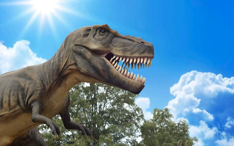 Tyrannosaurus Rex - iStock