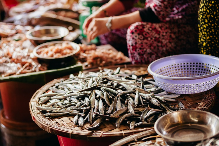 Raw fish assorted sliced and cut at street local market in Asia, Vietnam
