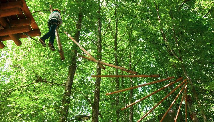 Kid in Tree-Top adventure Park iStock