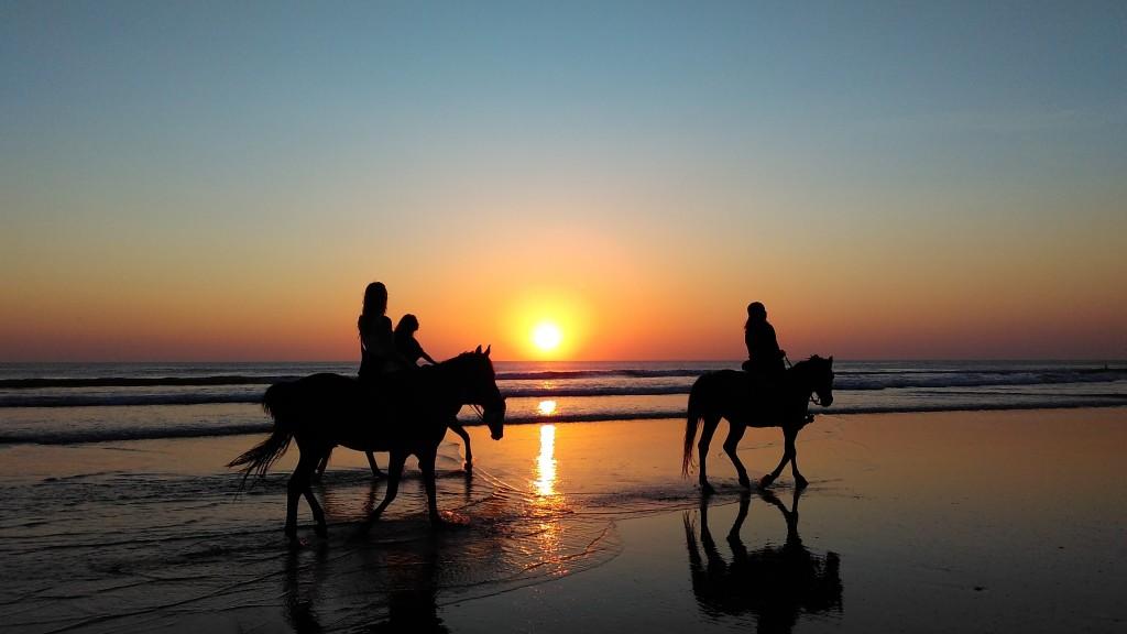 Sicily Horse Riding - Sicily