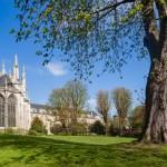 Abbaye de Saint Ouen - Rouen