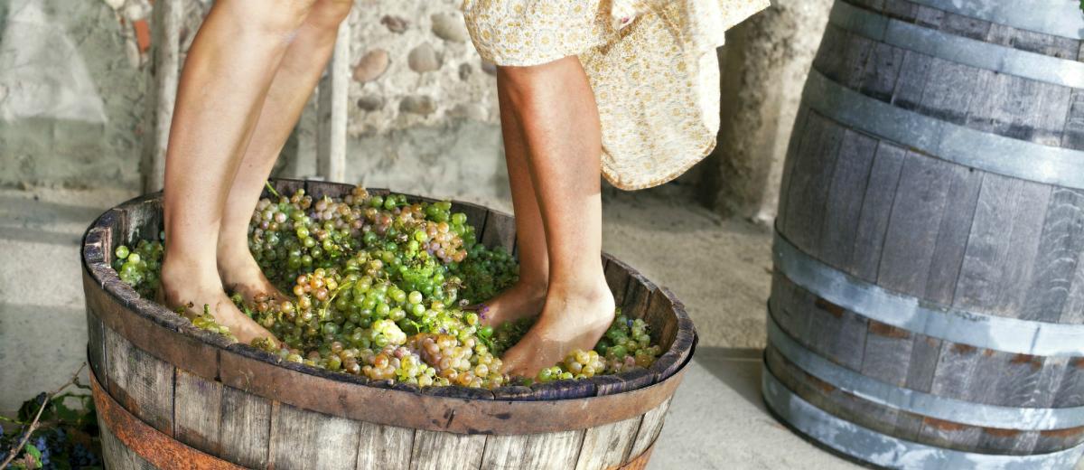 pounding grapes