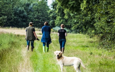 going-walkies-dog-friendly-cottages