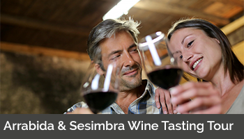 Arrabida & Sesimbra Wine Tasting Tour