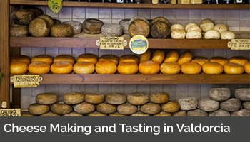 Cheese Making and Tasting in Valdorcia