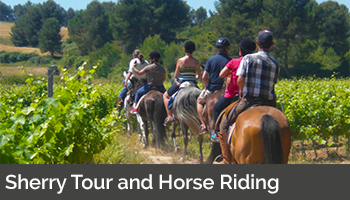 Sherry Tour with Horse Riding