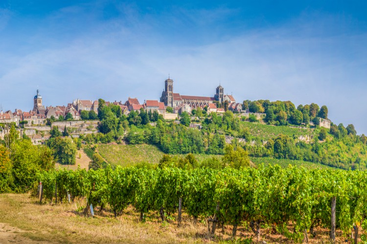 Panoramic view of the historic town of Vezelay with famous Abbaye Sainte-Marie-Madeleine de Vezelay),