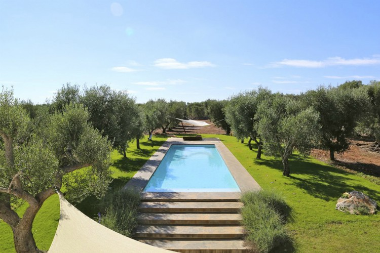 Trulli-di-Olive-Puglia-Olivers-Travels
