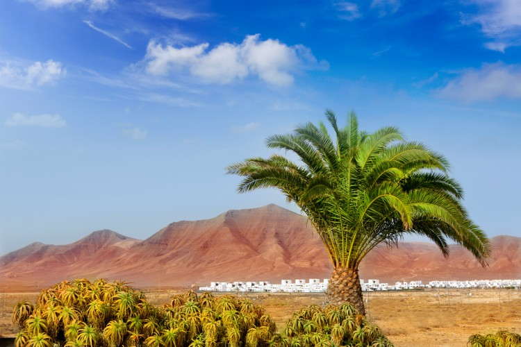 Ajaches mountain in Lanzarote Punta Papagayo at Canary Islands