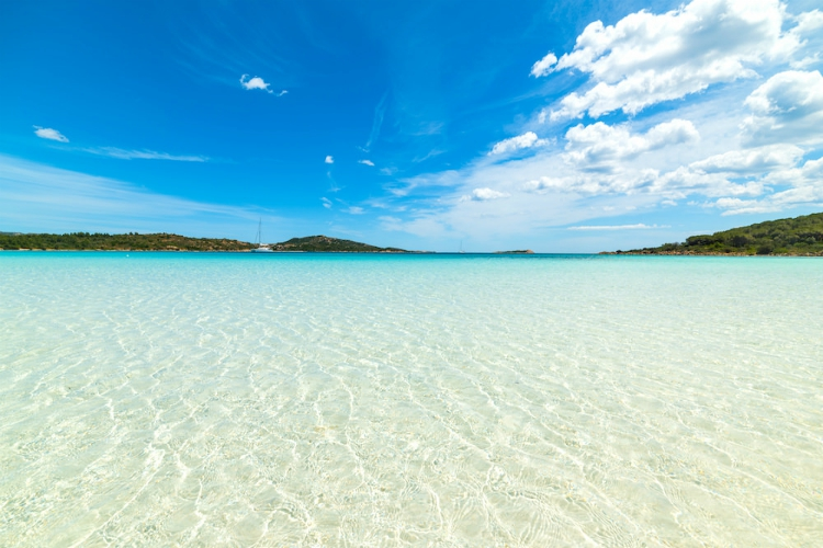 beaches in sardinia | white sand under clear water and blue skies, vegetation in the distance | Cala Brandinchi