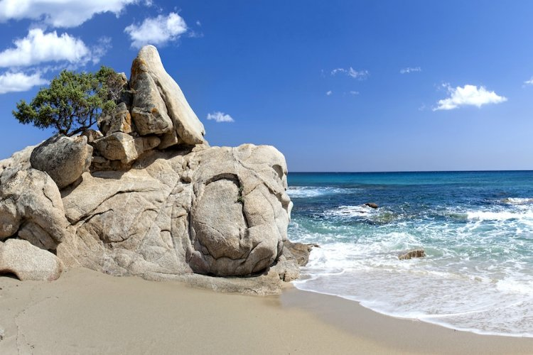 beaches in sardinia | rock formation with tree on beach with blue water | Santa Giusta Beach